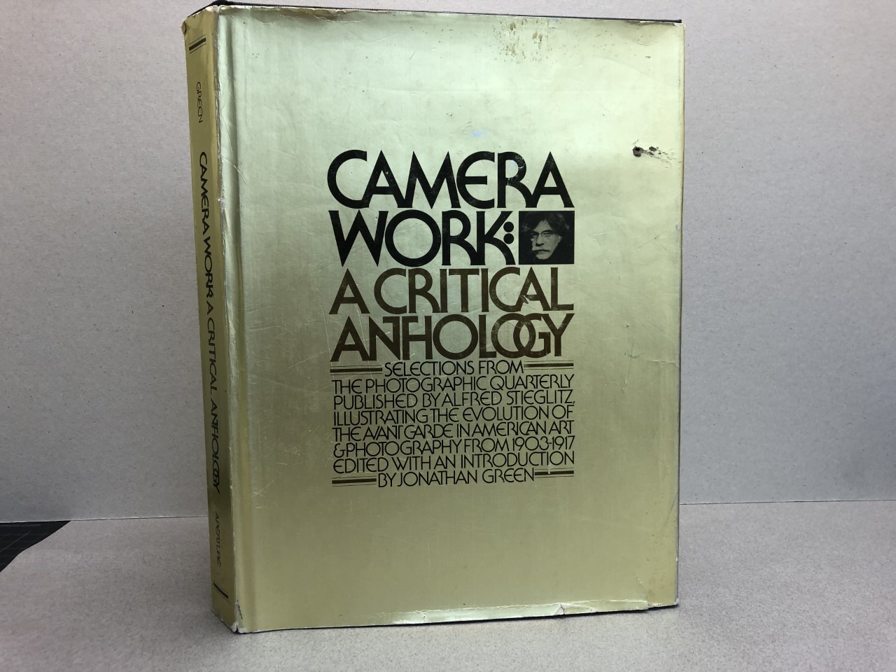 Image for CAMER WORK : A Critical Anthology