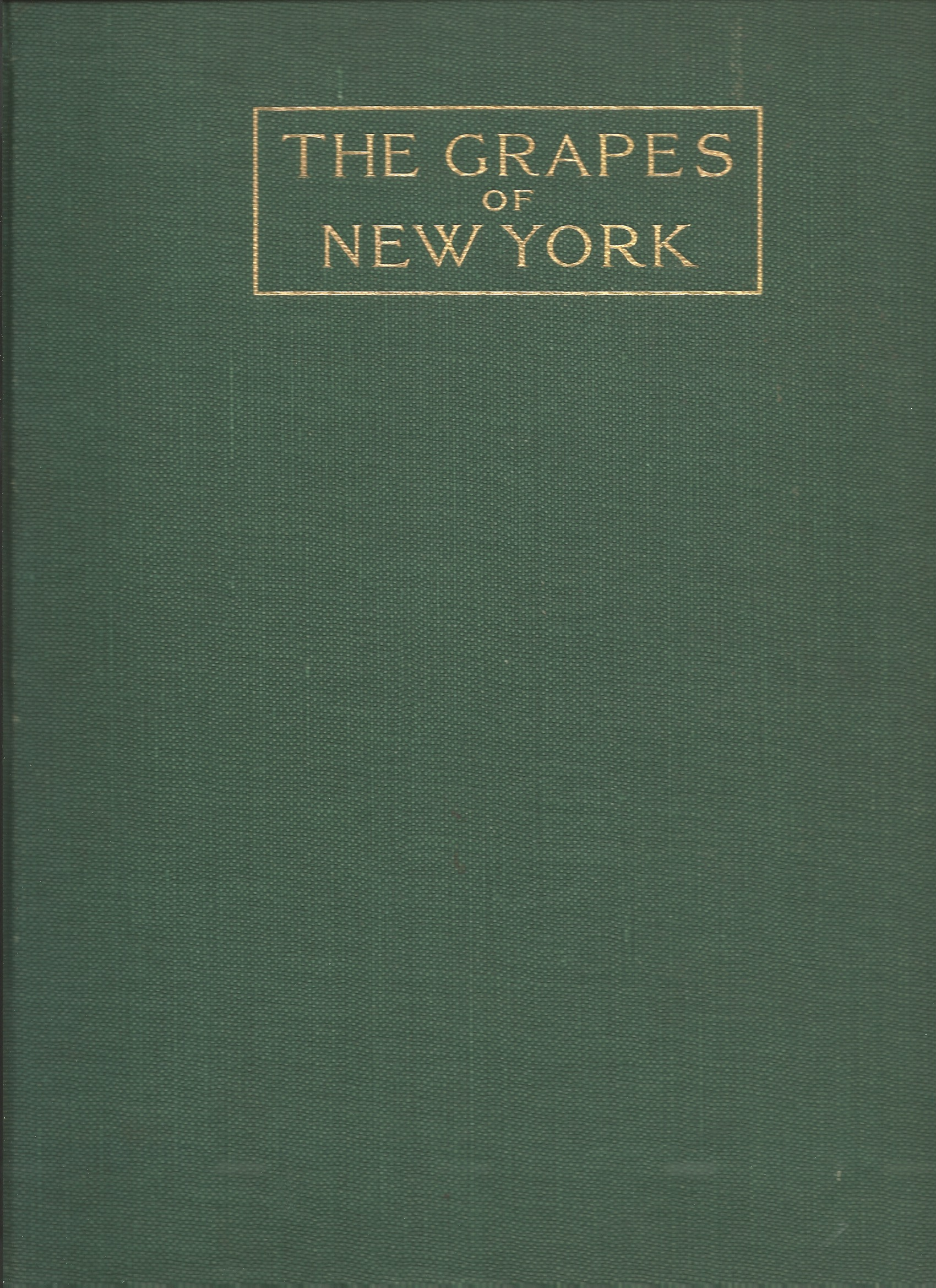 Image for THE GRAPES OF NEW YORK : State of New York Departments of Agriculture , Fifteenth Annual Report , Vol. 3 Part II .