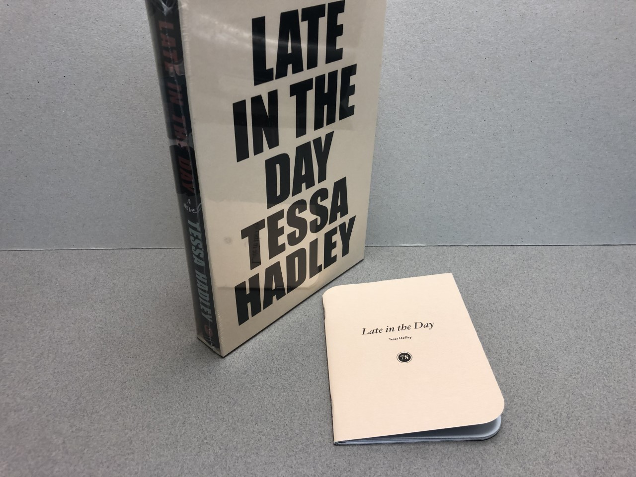 Image for LATE IN THE DAY : A Novel