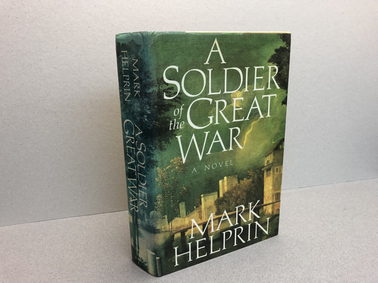 Image for A Soldier of the Great War A Novel