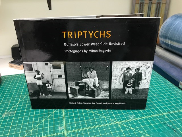 Image for TRIPTYHS : Buffalo's Lower West Side Revisited