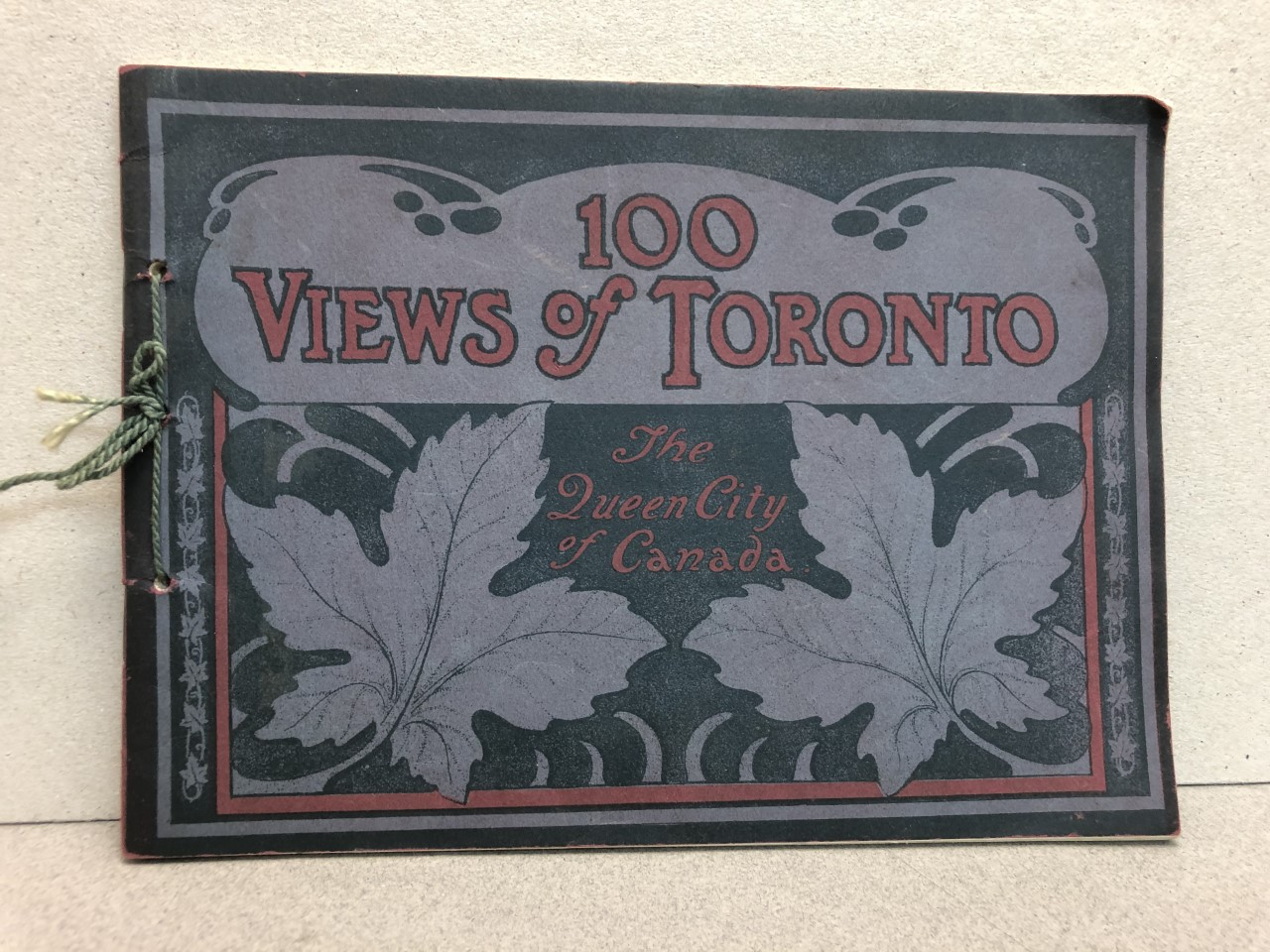 Image for 100 VIEWS OF TORONTO : The Queen City of Canada