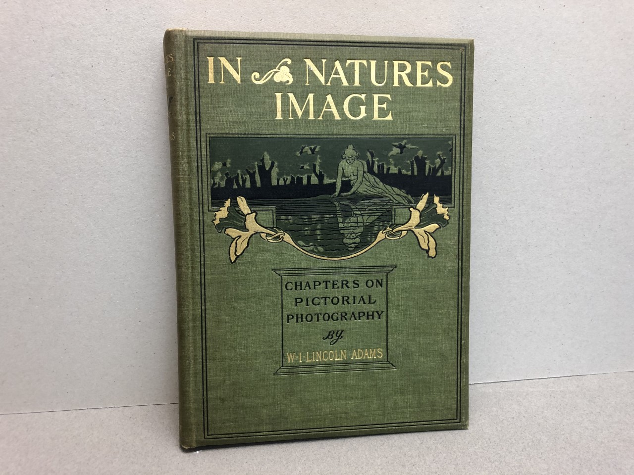 Image for IN NATURES IMAGE : Chapters on Pictorial Photography