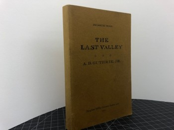 Image for THE LAST VALLEY